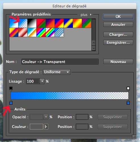 réglage des options de l'éditeur de dégradé sous Photoshop Elements