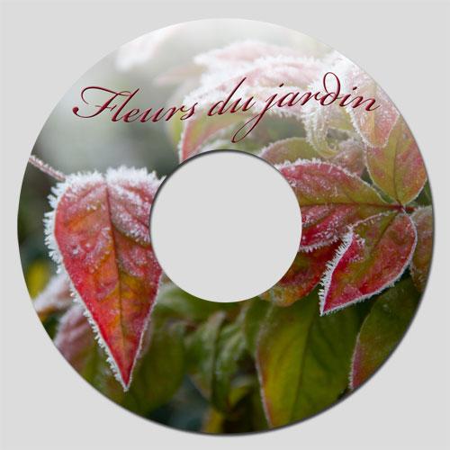 Etiquette CD réalisée sous Photoshop Eléments
