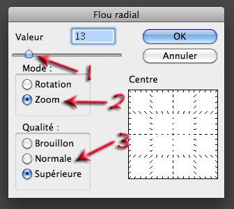 Fenêtre flou radial de Photoshop Elements