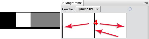 HistoNoirBlancGris2