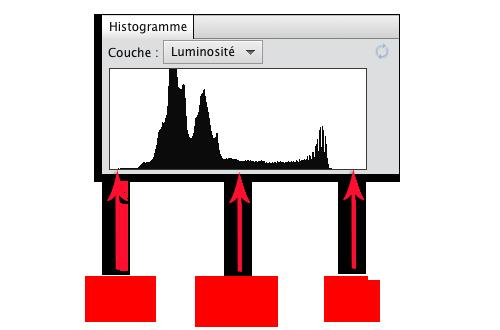 L'histogramme en photo numérique : définition et utilisation