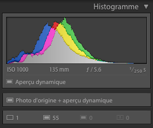 Lightroom-histogramme-apercus-dynamiques