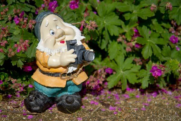 Je n'ai toujours pas trouvé l'appareil photo idéal… et vous ?